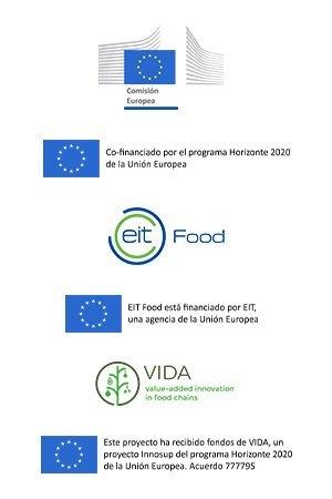 Feltwood-pie-Bajo-European-Flags-and-logos-RSA-EIT-VIDA-H2020-ES